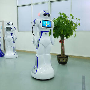 customized personal service robot Dabai manufacturer