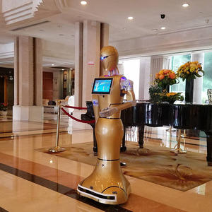 high quality customer service robot Dajin manufacturer