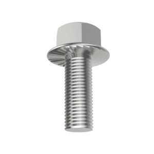 Hexagon Head Flange Bolts