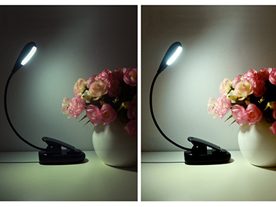 5 LED Book Light